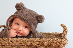 Baby bear. Four month old baby boy wearing a fully bear suit royalty free stock photography
