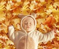 Baby bear. Cute baby dressed in fancy dress like little bear, sleeping on yellow autumn leaves Royalty Free Stock Image
