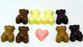 Baby  Bear Chocolate on white plate Stock Photography