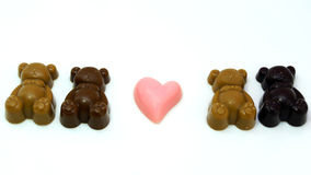 Baby  Bear Chocolate on white plate Royalty Free Stock Images
