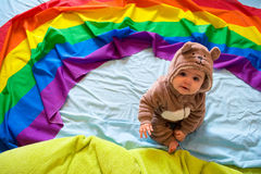 Baby bear Royalty Free Stock Images
