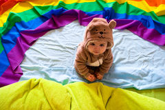 Baby bear Stock Image