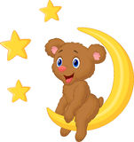 Baby bear sitting on the moon Stock Photos
