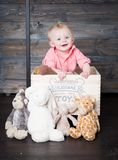 Beau with his Plush Toys royalty free stock photo