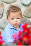 baby in the garden Royalty Free Stock Images