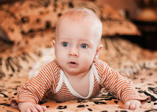Baby on the bed Stock Images