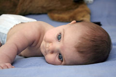 Baby in bed. Blue eyed baby in bed stock photography