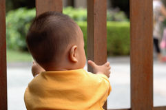 Baby behind gate. It is a cute chinese baby behind gate, he is 10 months old Stock Images