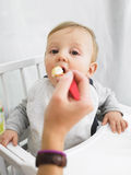 Baby Being Fed. Baby in high chair being fed by adult. Vertically framed shot Stock Photography
