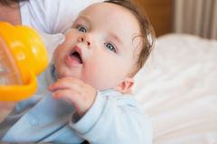 Baby being feed by mother Stock Photography