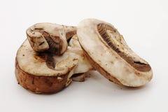 Baby Bella mushrooms Stock Image