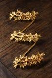 baby biżuteria Fotografia Royalty Free