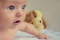 Baby with big blue eyes Royalty Free Stock Images