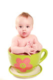 Baby in a big cup Stock Image