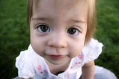 Baby Big Eyes. Small Cute Big-Eyed Child looking directly at You Royalty Free Stock Images