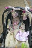 Baby binnen vervoer bij park, Parijs, Frankrijk stock foto's