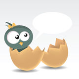 Baby Bird. Illustration of a baby bird Stock Photography