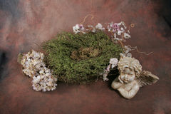 Baby Bird Nest Fantasy Background Backdrop (Insert your client) royalty free stock image