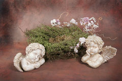 Baby Bird Nest Fantasy Studio Set (Insert Isolated Client) Stock Photos