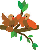 The baby birds. The vector illustration with birds Royalty Free Stock Photography