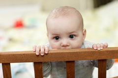 Baby biting cot. The baby boy biting a wooden cot at home Royalty Free Stock Photo