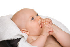 Baby biting leg Royalty Free Stock Images