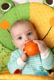 Baby biting orange Stock Photos