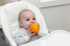 Baby biting orange Royalty Free Stock Photography