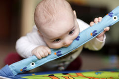 Baby biting playing mat Stock Images