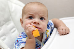 Baby biting pumpkin Royalty Free Stock Photos