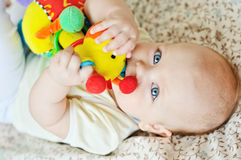 Baby biting toy Royalty Free Stock Photos