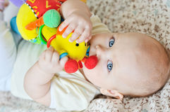 Baby biting a toy Royalty Free Stock Photography