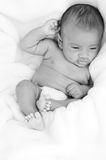 Baby in  black and white. Photo of a baby lying on bed Royalty Free Stock Image