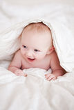 Baby In A Blanket. An adorable baby boy in a white blanket Stock Image