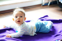 Baby on blanket Stock Photography