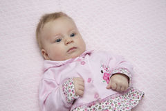 Baby on blanket. Baby on a pink blanket Royalty Free Stock Photography