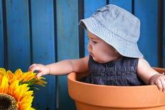 Baby in bloempot royalty-vrije stock foto