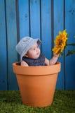 Baby in bloempot royalty-vrije stock fotografie