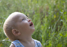 Baby blond boy summer outdoors Royalty Free Stock Photos