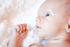 Baby Blue Eyes. Cute little baby looking to the side with his big blue eyes laying on a soft white fuzzy blanket Royalty Free Stock Images