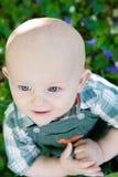 Baby Blue Eyes Royalty Free Stock Photos