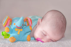 Baby in blue Stock Photography