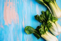 Baby bok choy on blue background Royalty Free Stock Image