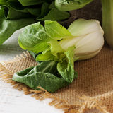 Baby bok choy on a wooden table Stock Images