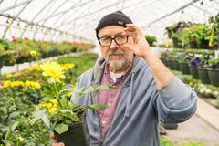 Baby-boomer age man Stock Photography