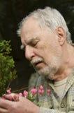 Baby boomer gardener close-up Stock Photography