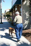 Baby boomer walking dog Royalty Free Stock Photos