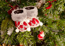 Baby bootees. Red baby bootees in a Christmas tree Royalty Free Stock Images