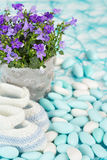 Baby booties and flowers. On sugared almonds royalty free stock photo