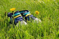 Baby booties. On green grass Royalty Free Stock Image